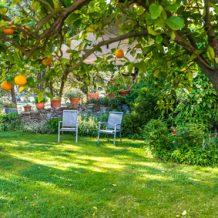Idées déco : les différents types de jardins